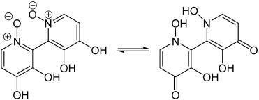 Orellanine tautomers