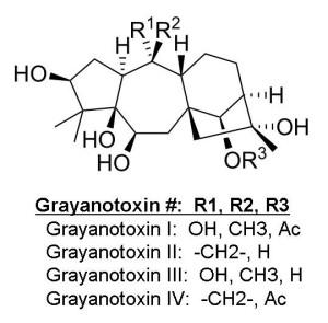 Grayonotoxins