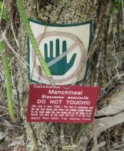 Manchineel tree warning by Scott Hughes via Flickr (CC BY-SA 2.0)