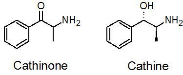 Cathinone-cathine
