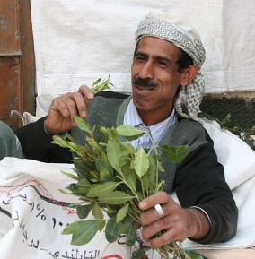 Chewing khat by Ferdinand Reus (CC BY-SA 2.0)