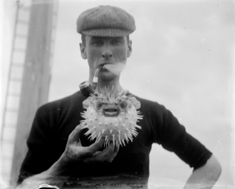 Man with Pufferfish by State Library Victoria (CC BY-NC 2.0)