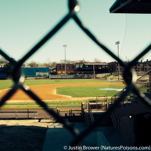 "Durham Athletic Park by Justin Brower. The old home of the Durham Bulls and location of the movie ""Bull Durham."""