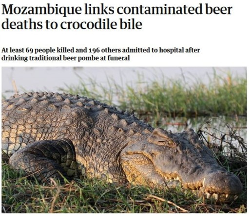 CrocodileBileHeadline