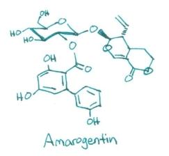 Amorogentin