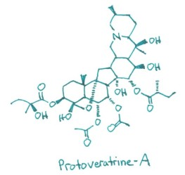 Protoveratrine-A