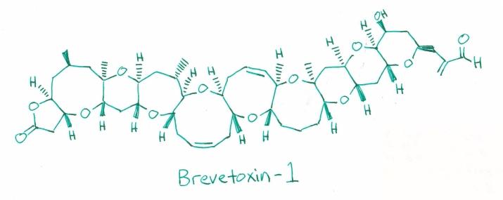 Brevetoxin
