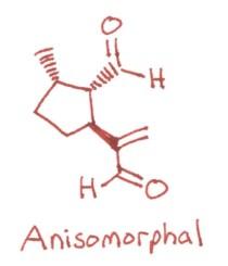 Anisomorphal