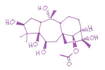 Grayanotoxin-I