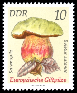 Satans bolete stamp - Germany